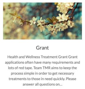 Team TMR Grants